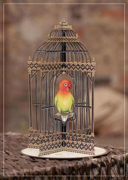 Birdcage - greeting card